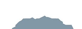 LINK DSG logo